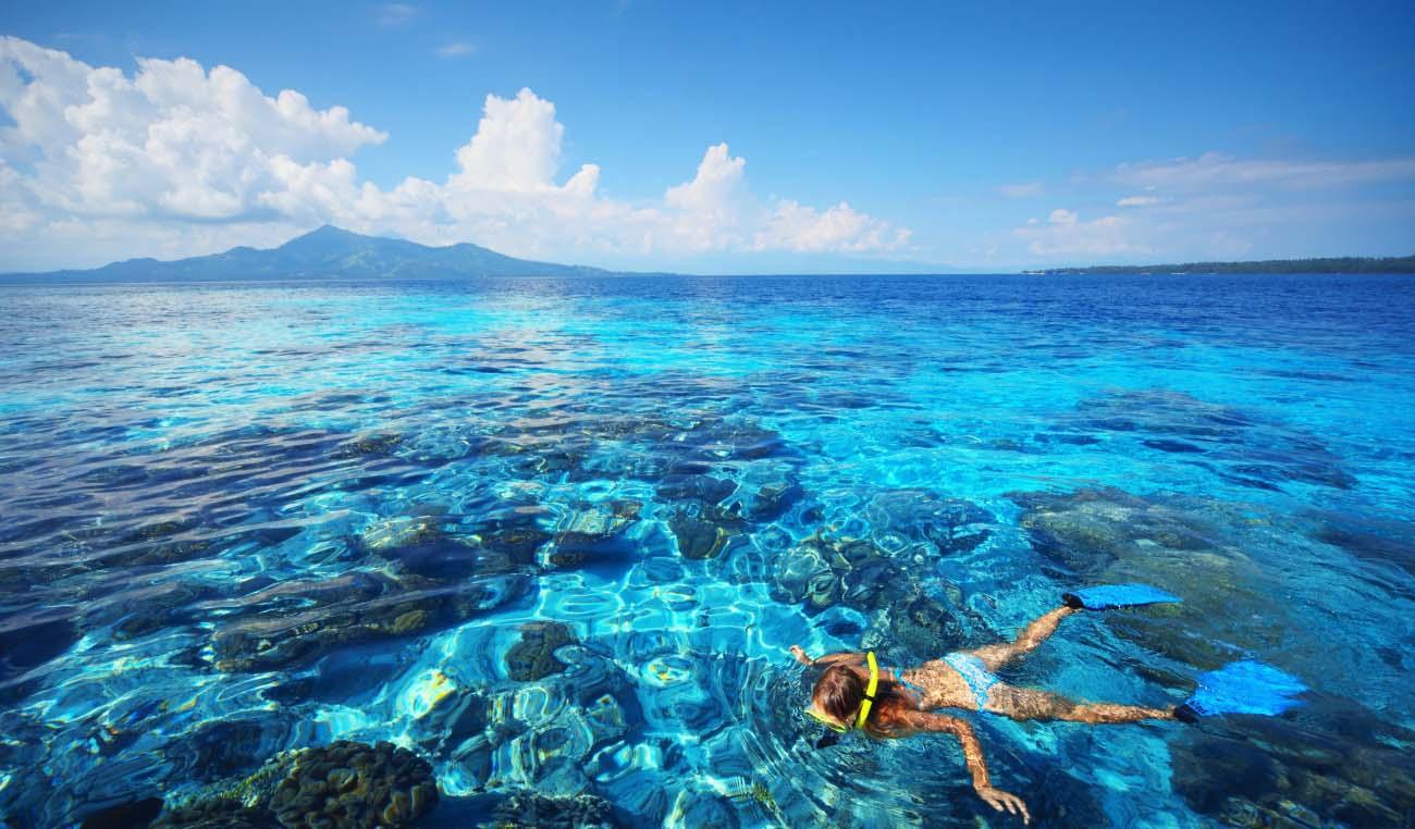 印尼苏门答腊岛龙鱼_印尼潜水旅行攻略:巴厘岛,美娜多,吉利岛潜水 - 攻略